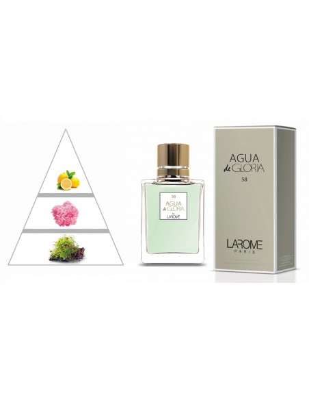 AGUA DE GLORIA by LAROME (58F) Perfume Feminino - Pirâmide olfatória