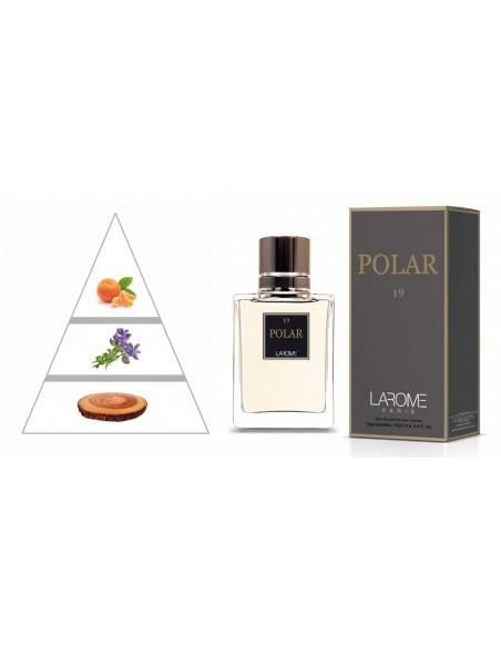 POLAR by LAROME (19M) Perfume Masculino - Pirâmide olfatória