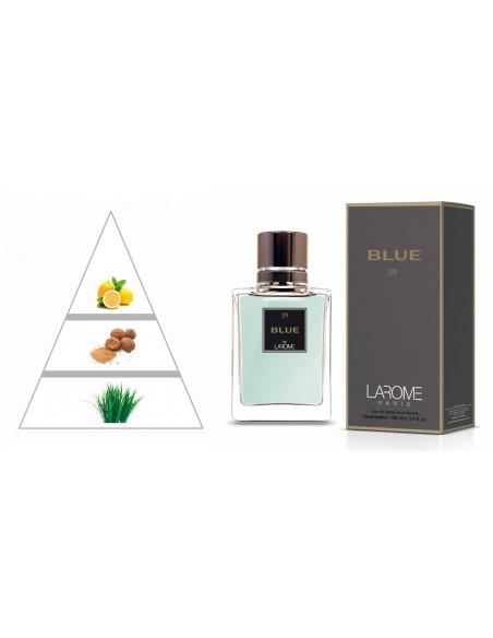 BLUE by LAROME (29M) Perfume Masculino - Pirâmide olfatória