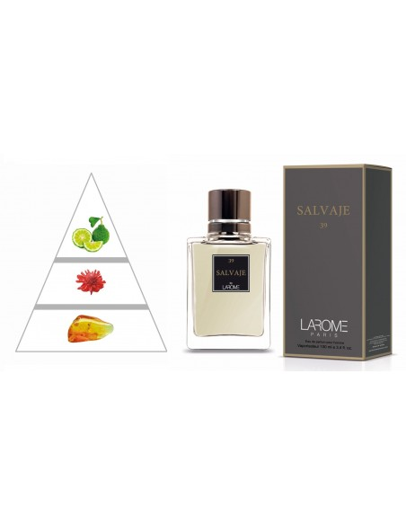 SALVAJE by LAROME (39M) Perfume for Man - Olfactory pyramid